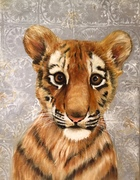little tiger baby's animal serie 2