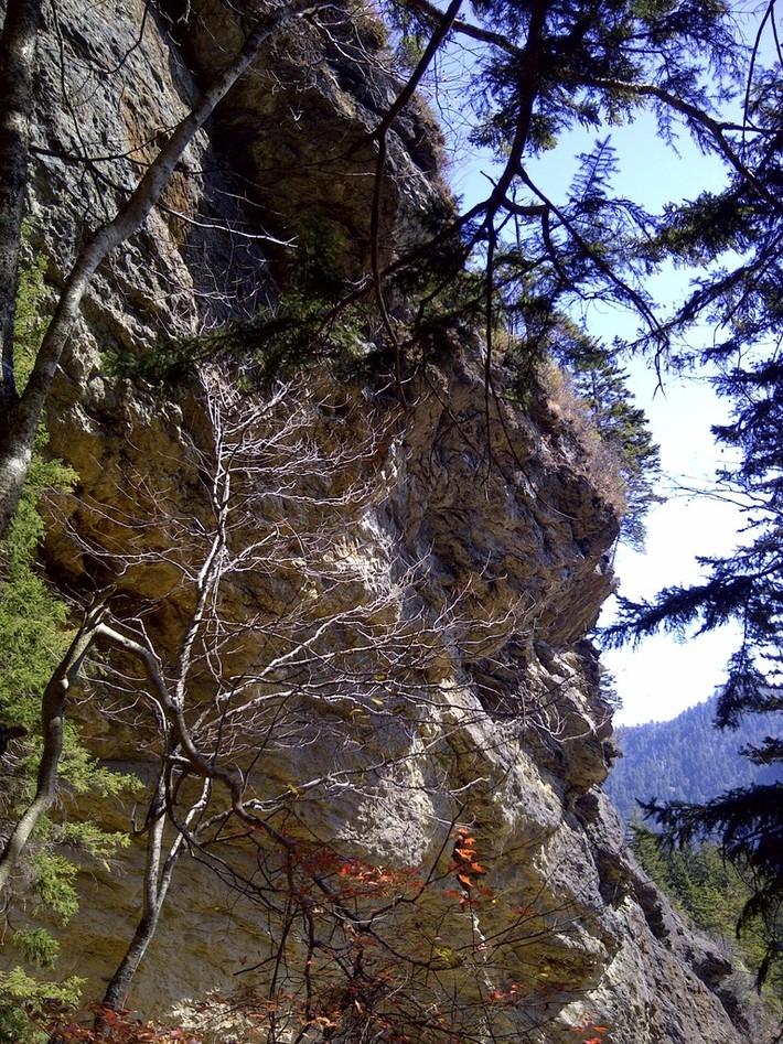 alum caves 046