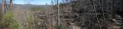 Pine Mountain Tornado Damage