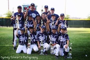 2013 Hart Pinto National Yankees