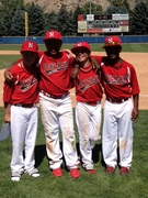 2013 NTIS Pre-selection candidates