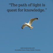 """The path of light is quest for knowledge."""