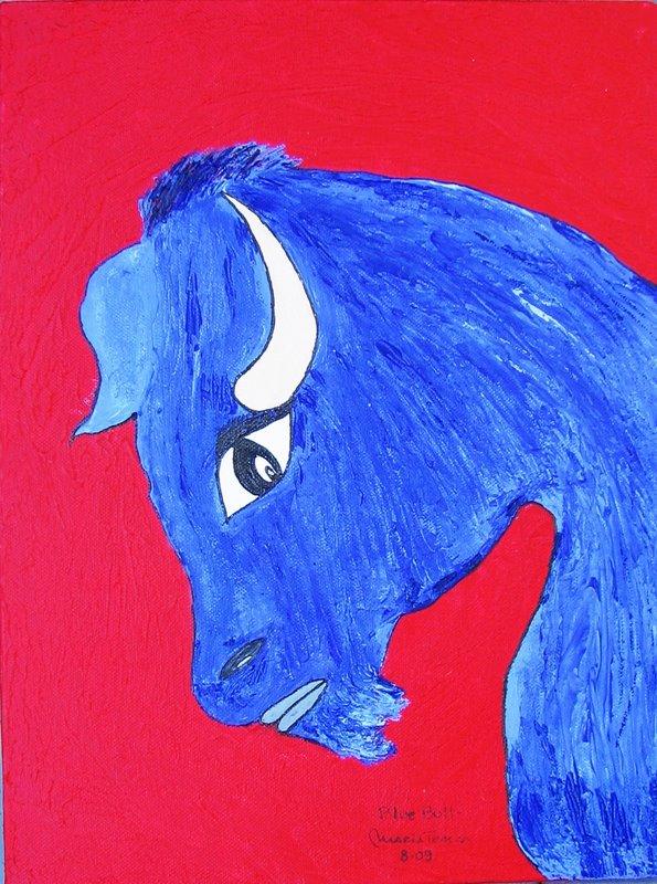 bull blue30xaoast