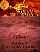 nocturnal Illumination
