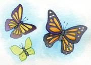 Butterflies - Jesus Made Me for Good Works