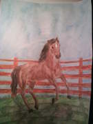 Häst nr 2