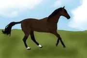 Galopperade häst