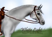 whitelightklar