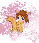 Meow~~:3