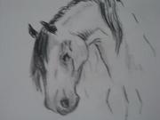 Häst nr 3