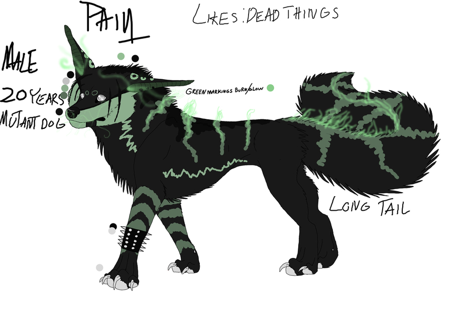 Pain character sheet