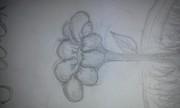 En blomma :P