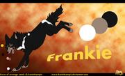 COR-Frankie-ref-cheet