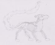Fiery Skeleton Hound