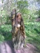 The old man of the wood