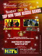 Sunday Nice featuring TOP NY Reggae Bands