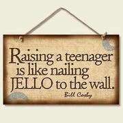 Raising a Teen