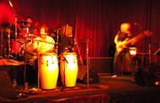 tim lee and reed - grooving