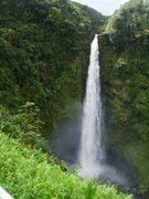 Akaka Falls Kimberly's Nov 09 Trip