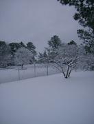 snow four 2-13-10 016