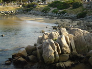 Monterey Spring Break