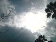 Gaia Energies