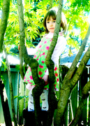 Lily in a tree