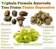 Triphala Infografia