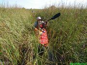 Taylor Slough grass paddling