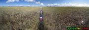 Paddling down the Shark River Slough Everglades Aerial kayakfari