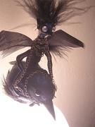 Pixie Poe, the raven rider