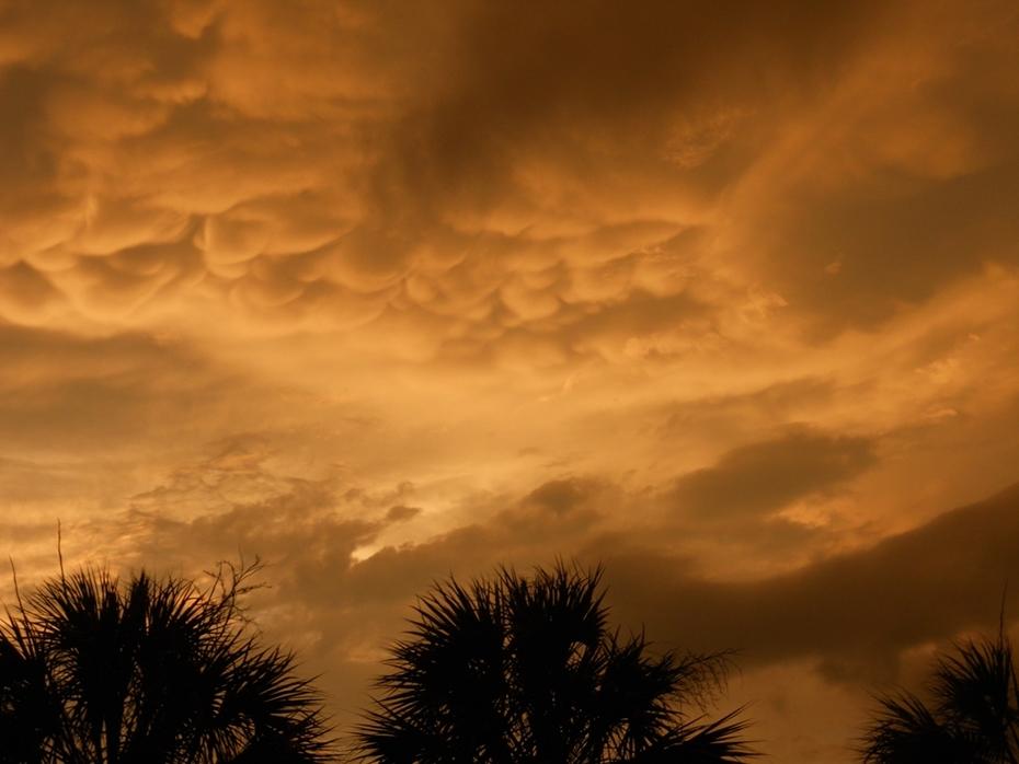 Florida Summer Amber Storm at Sunset