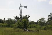 Windmill at Circle B Ranch Reserve