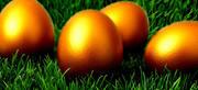 golden egg 2 2010
