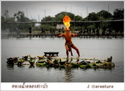 Ayutthaya Floting Market