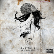Anatomus front