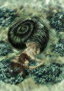 shellmaid