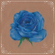 Vintage Flower : Rose