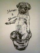 Shower 2 shower