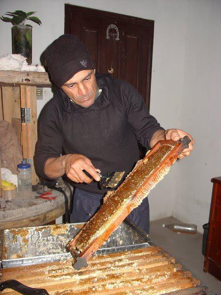 Trabalhando com mel do meu apiário