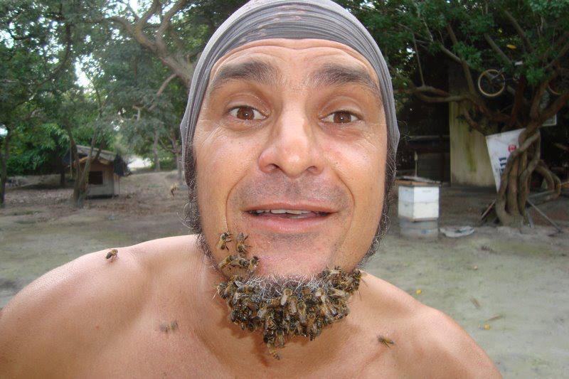Minhas abelhas, minha luz!