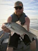 15.25'' White Bass (6-6-19)