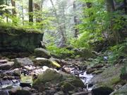 High Rock Vista Trail