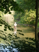 Fisherman in Paradise