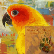 "Card of the Day ""Parrot"""