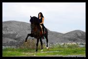 Άλογο που χορεύει!