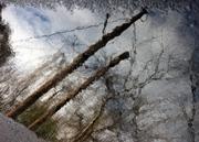 καθρέφτης από βροχή