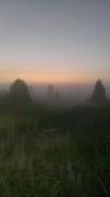 14 июня 2019 22.30 Туман после летнего дождя