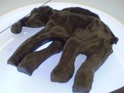 mamut de siberia