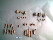 Restos óseos aborígenes teñidos de rojo.